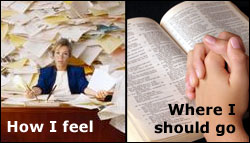 Ministry priorities
